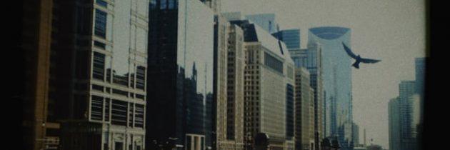 Chicago & Son